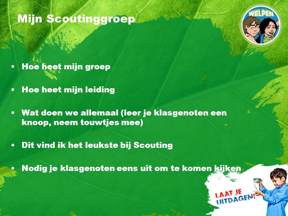 Mijn Scoutinggroep Hoe heet mijn groep Hoe heet mijn leiding