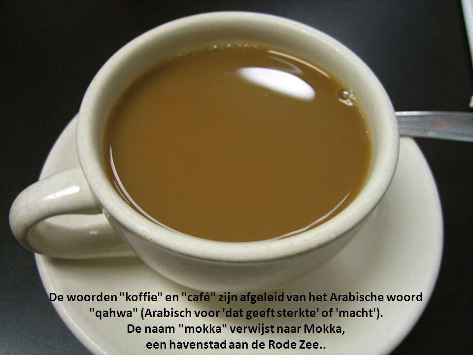 De woorden koffie en café zijn afgeleid van het Arabische woord