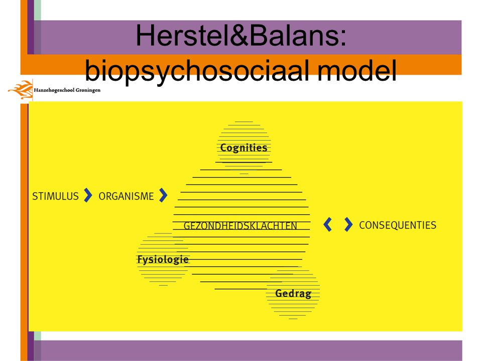 Herstel&Balans: biopsychosociaal model