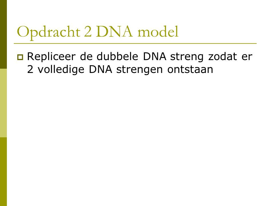 Opdracht 2 DNA model Repliceer de dubbele DNA streng zodat er 2 volledige DNA strengen ontstaan