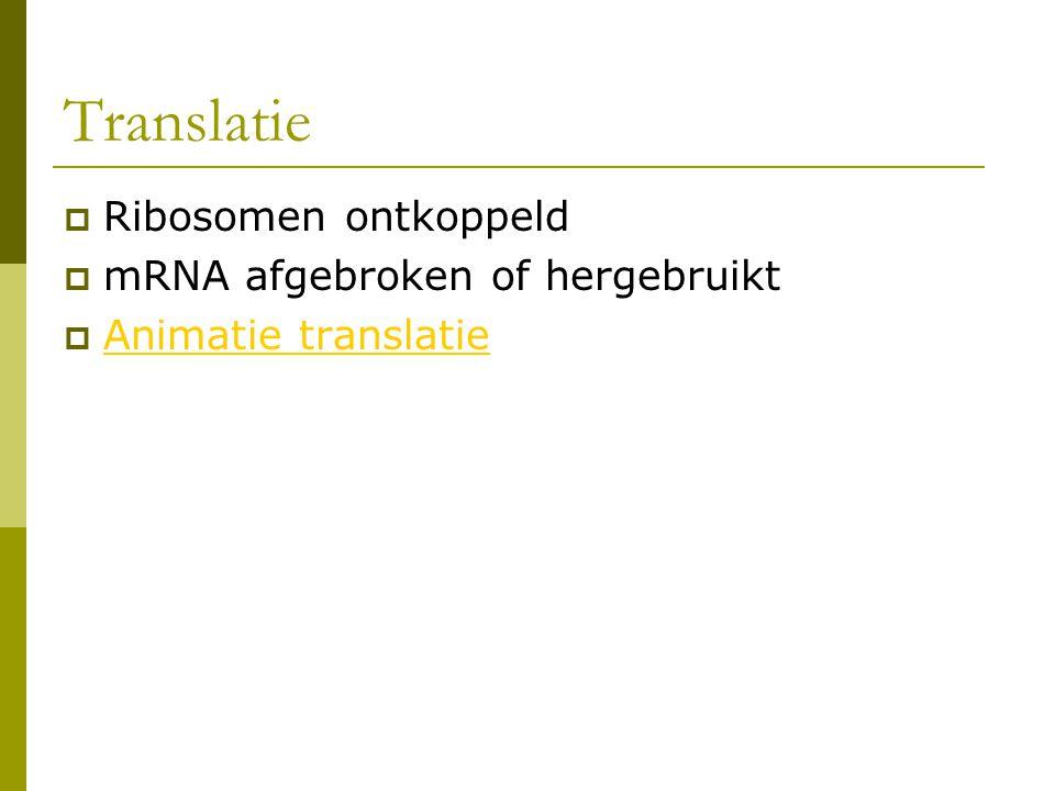 Translatie Ribosomen ontkoppeld mRNA afgebroken of hergebruikt