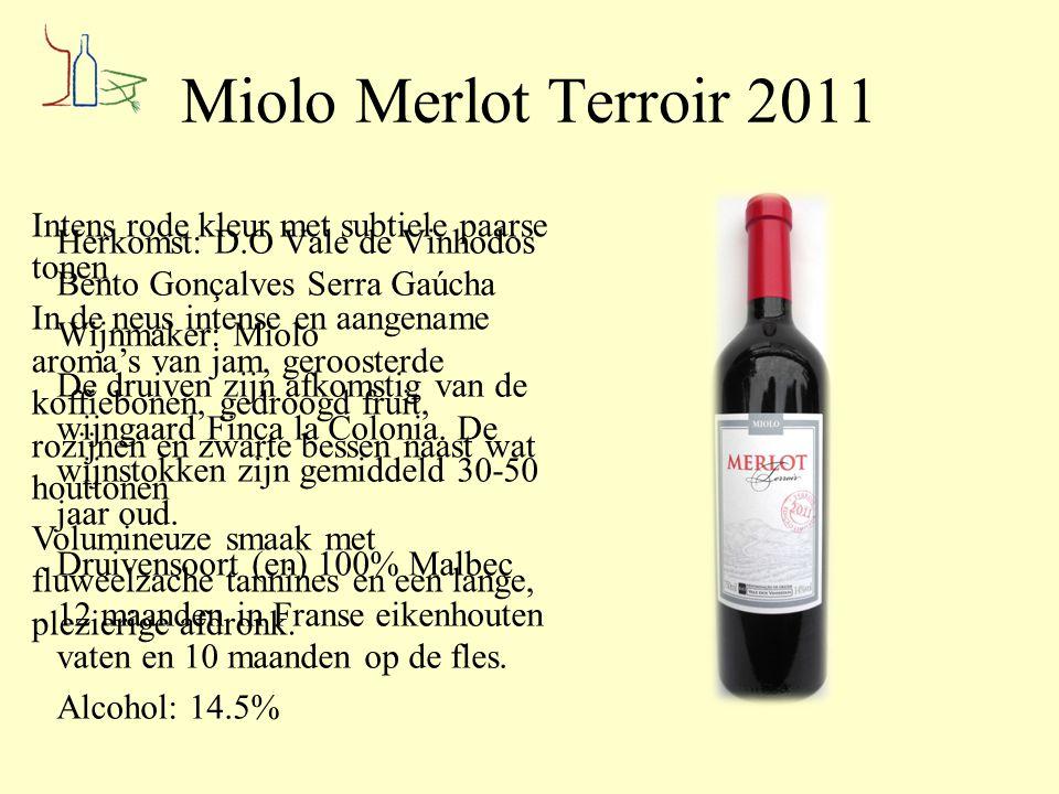 Miolo Merlot Terroir 2011 Intens rode kleur met subtiele paarse tonen