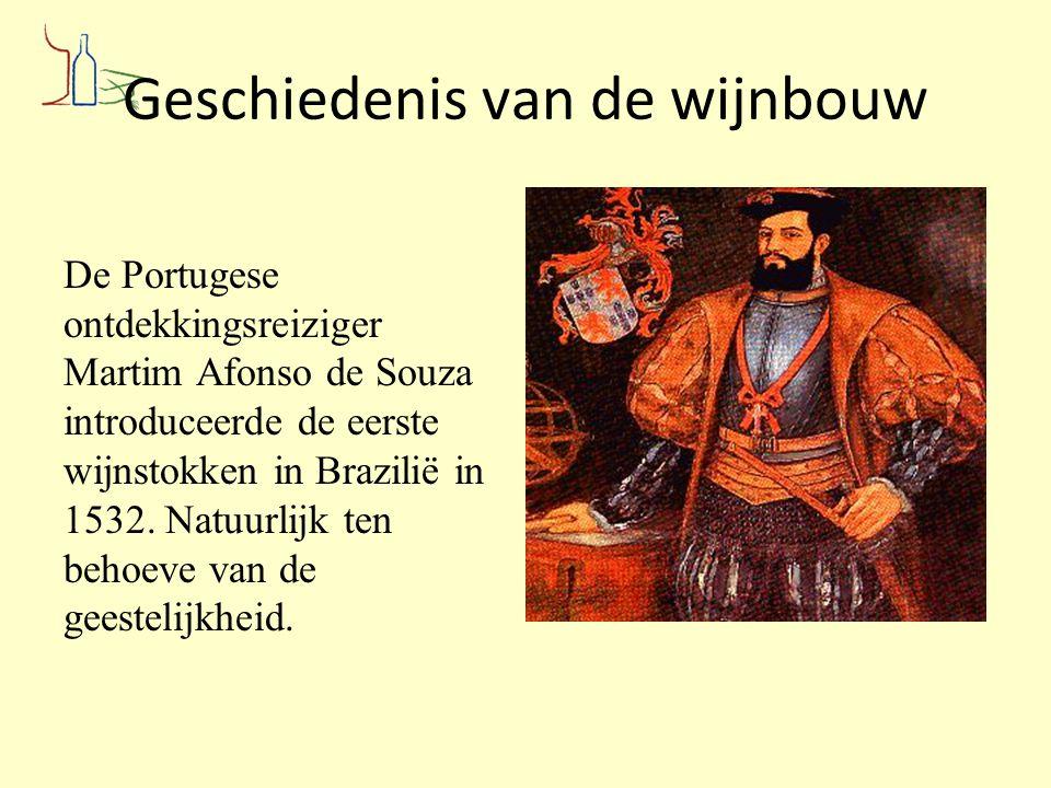 Geschiedenis van de wijnbouw