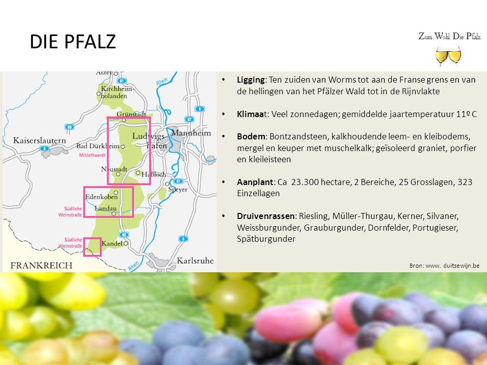 DIE PFALZ Ligging: Ten zuiden van Worms tot aan de Franse grens en van de hellingen van het Pfälzer Wald tot in de Rijnvlakte.