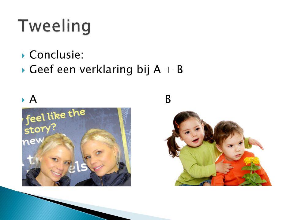 Tweeling Conclusie: Geef een verklaring bij A + B A B