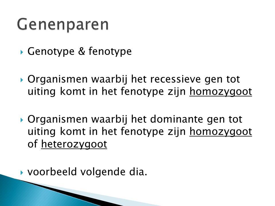 Genenparen Genotype & fenotype