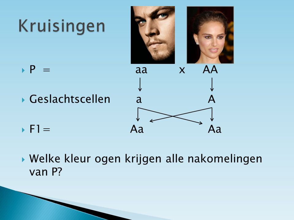 Kruisingen P = aa x AA Geslachtscellen a A F1= Aa Aa