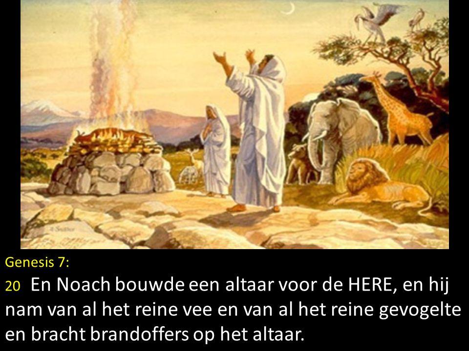 Genesis 7: