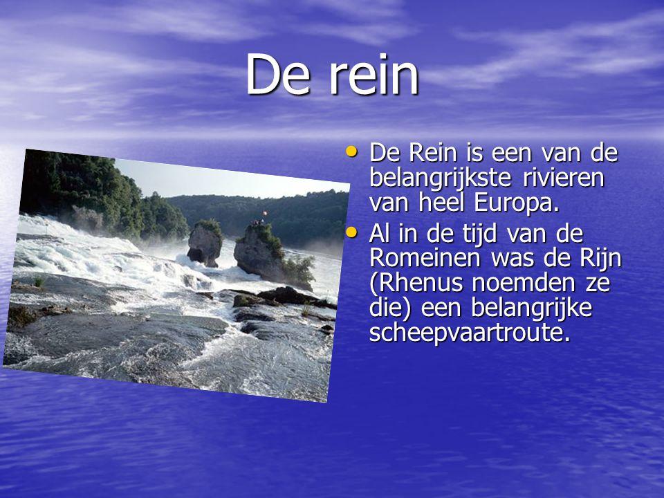 De rein De Rein is een van de belangrijkste rivieren van heel Europa.