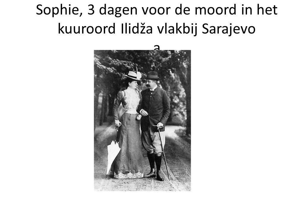 Aartshertog Franz- Ferdinand en Sophie, 3 dagen voor de moord in het kuuroord Ilidža vlakbij Sarajevo a