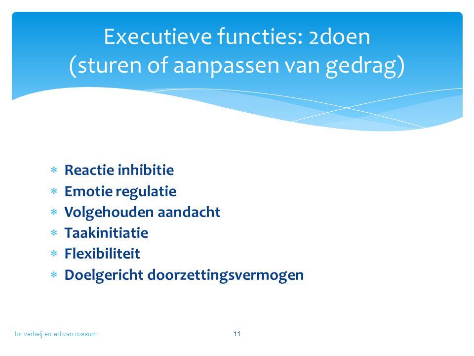 Executieve functies: 2doen (sturen of aanpassen van gedrag)