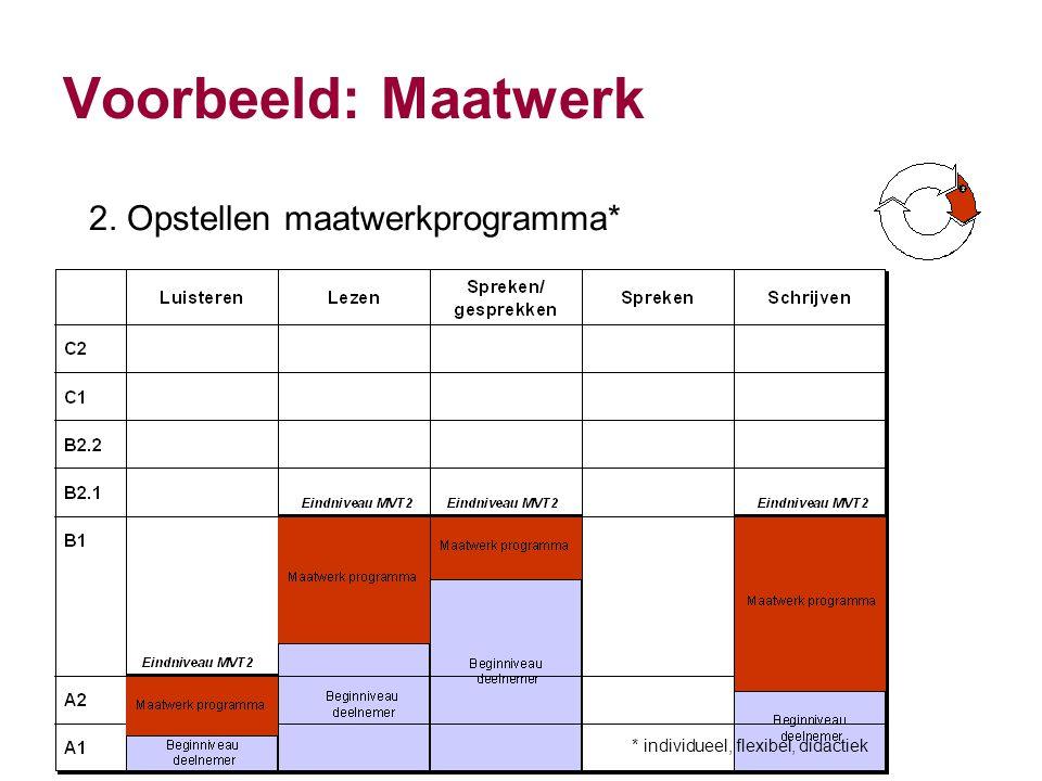Voorbeeld: Maatwerk 2. Opstellen maatwerkprogramma*