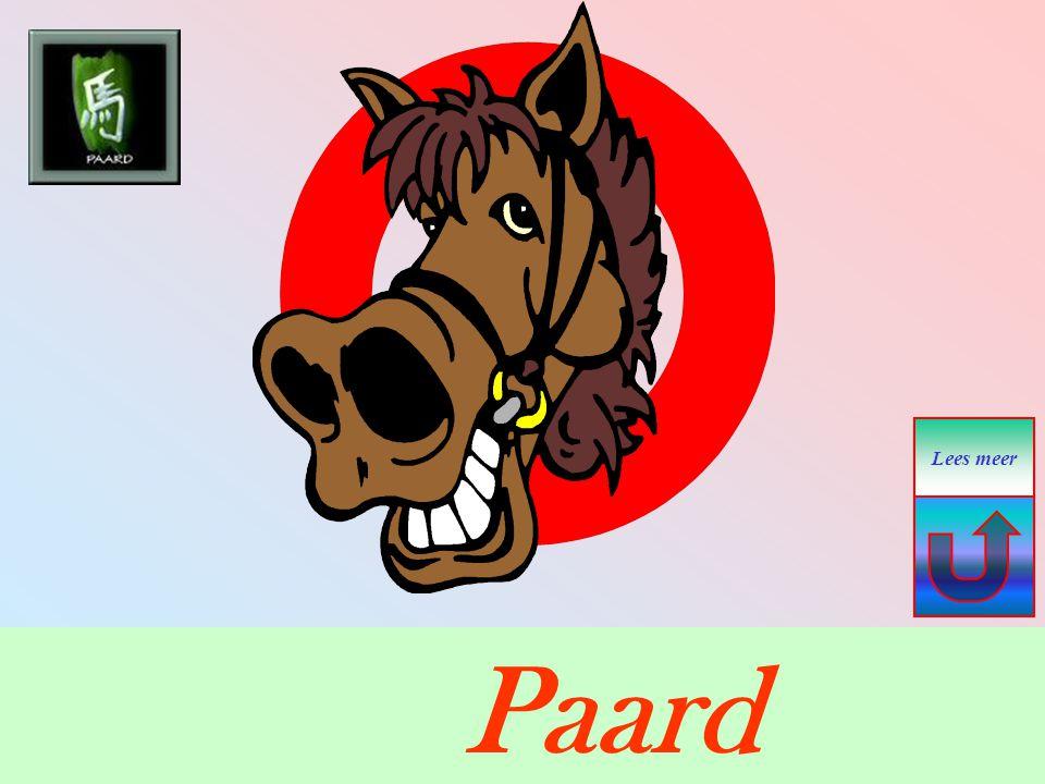 Paard Lees meer
