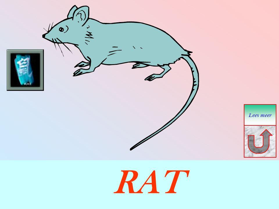 RAT Lees meer