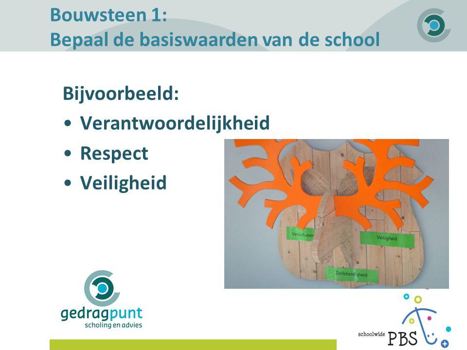 Bouwsteen 1: Bepaal de basiswaarden van de school