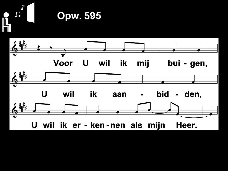 Opw. 595