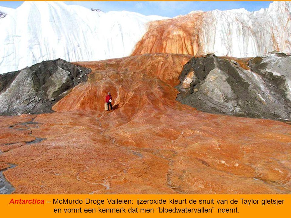 Antarctica – McMurdo Droge Valleien: ijzeroxide kleurt de snuit van de Taylor gletsjer en vormt een kenmerk dat men bloedwatervallen noemt.