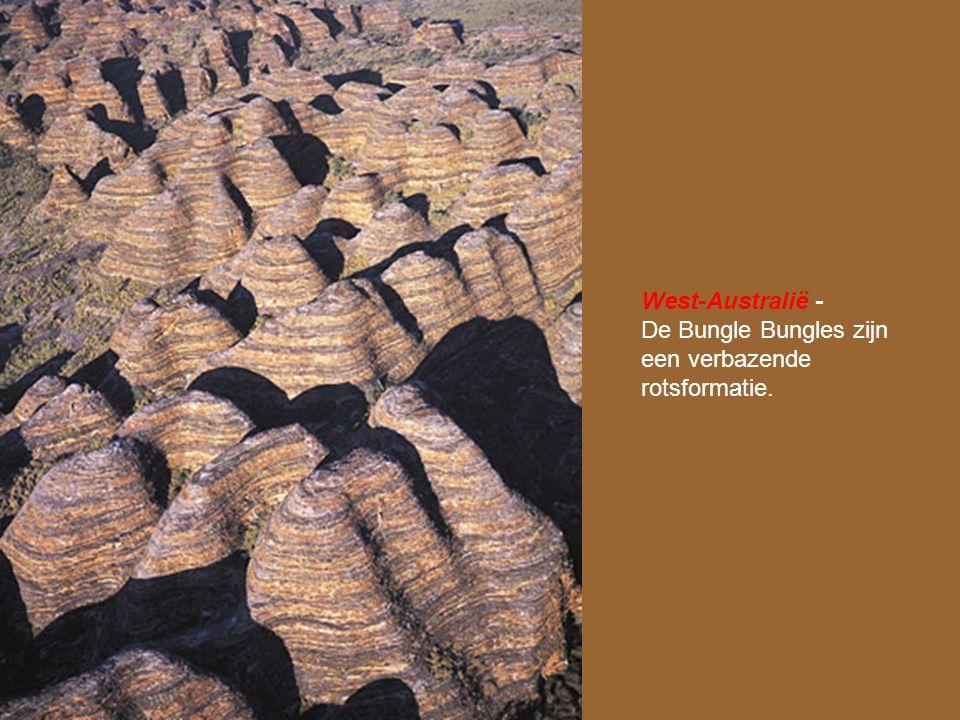 West-Australië - De Bungle Bungles zijn een verbazende rotsformatie.