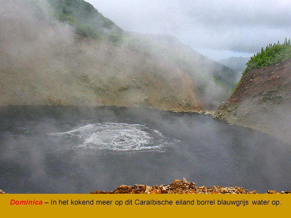 Dominica – In het kokend meer op dit Caraïbische eiland borrel blauwgrijs water op.