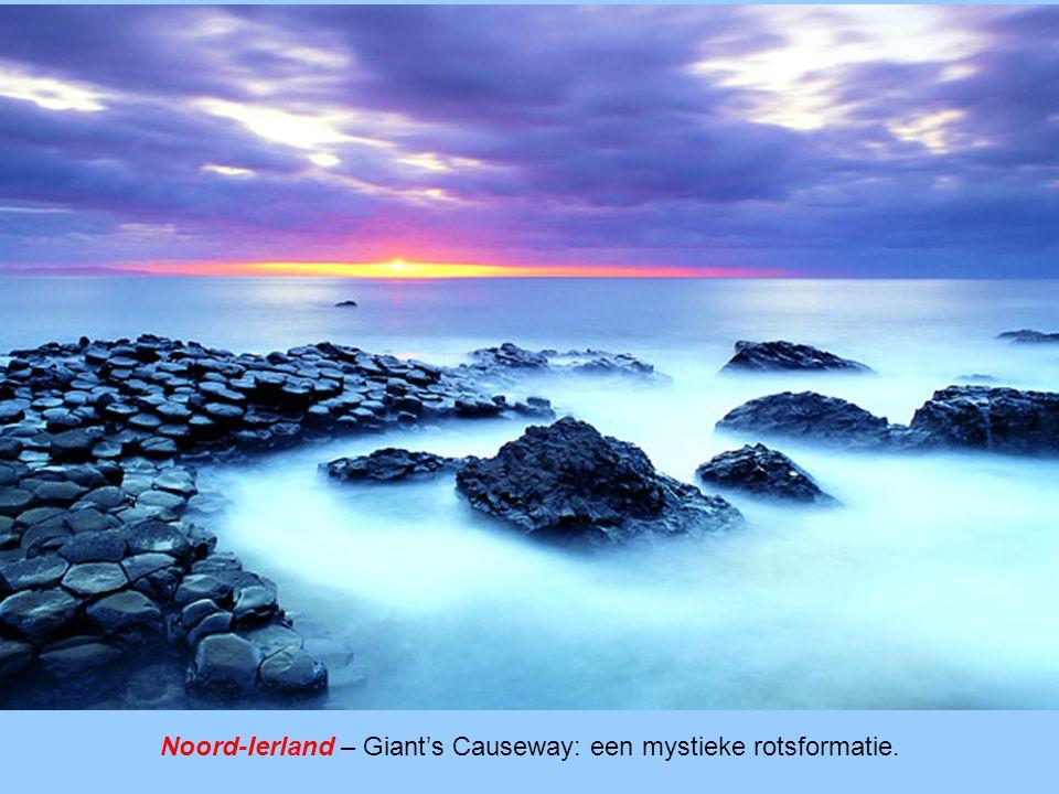 Noord-Ierland – Giant's Causeway: een mystieke rotsformatie.