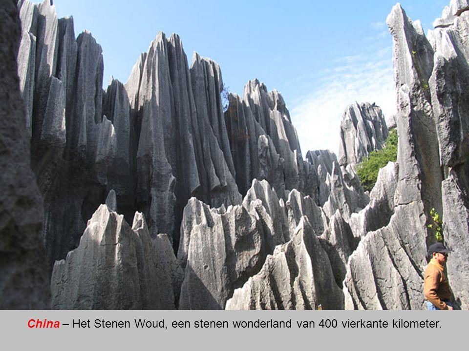 China – Het Stenen Woud, een stenen wonderland van 400 vierkante kilometer.