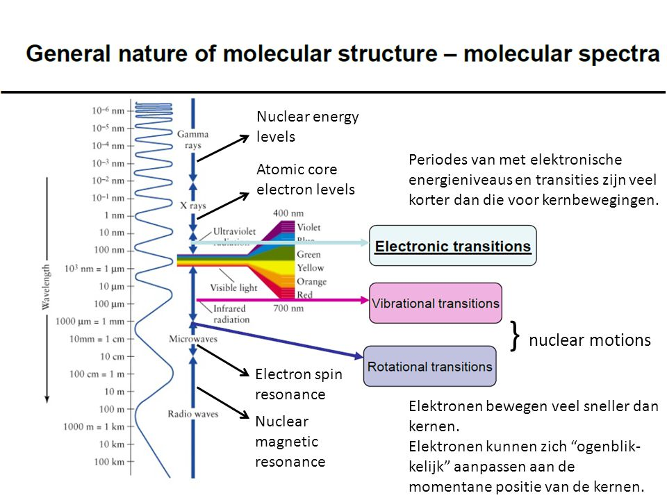 } nuclear motions Nuclear energy levels