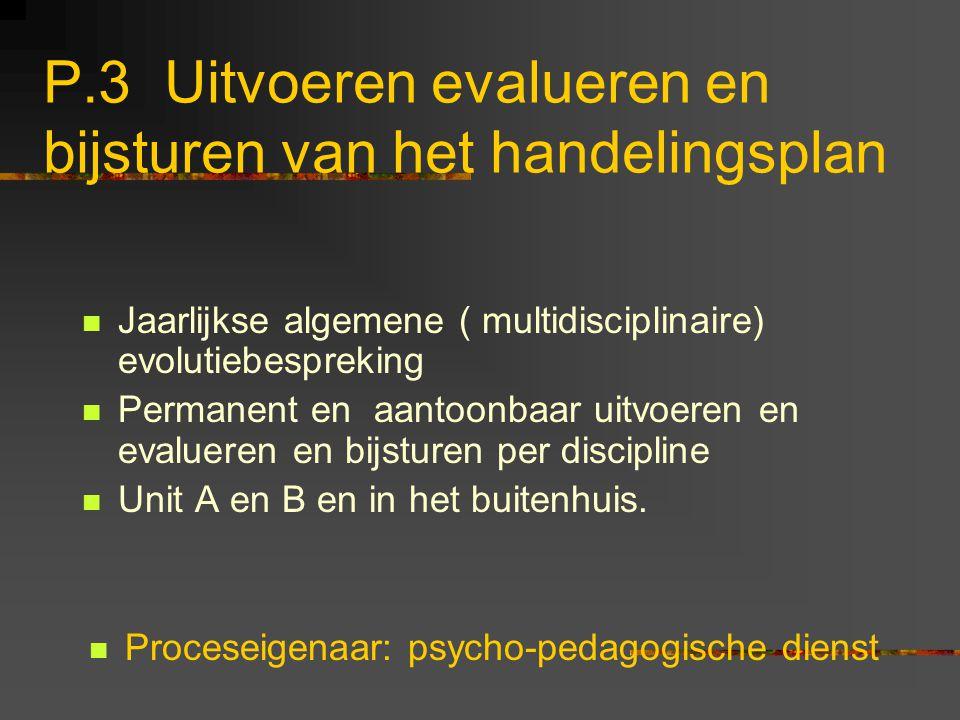 P.3 Uitvoeren evalueren en bijsturen van het handelingsplan