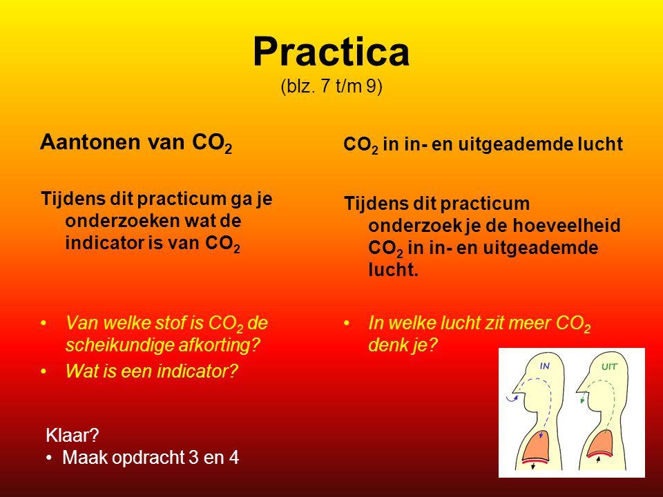 Practica (blz. 7 t/m 9) Aantonen van CO2