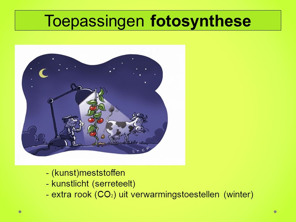 Toepassingen fotosynthese