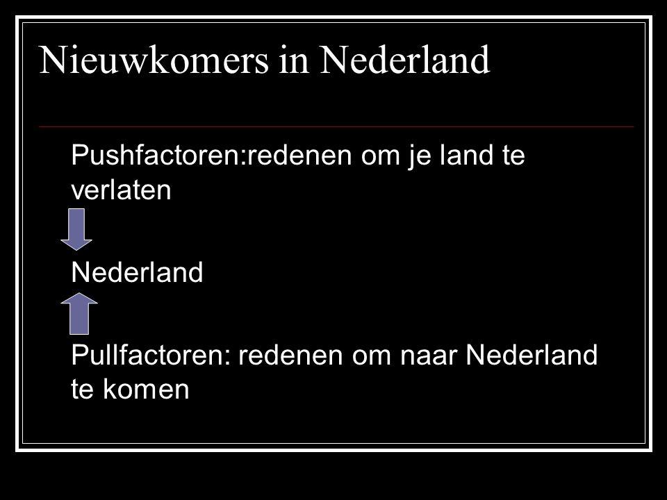 Nieuwkomers in Nederland