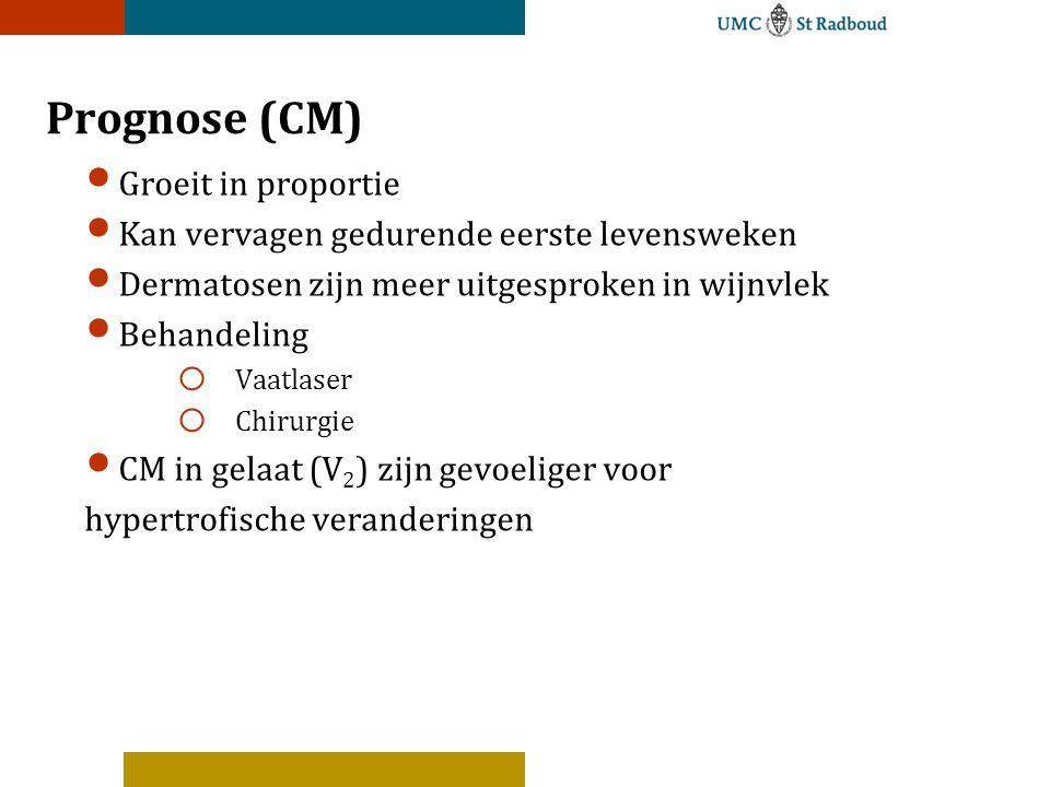 Prognose (CM) Groeit in proportie
