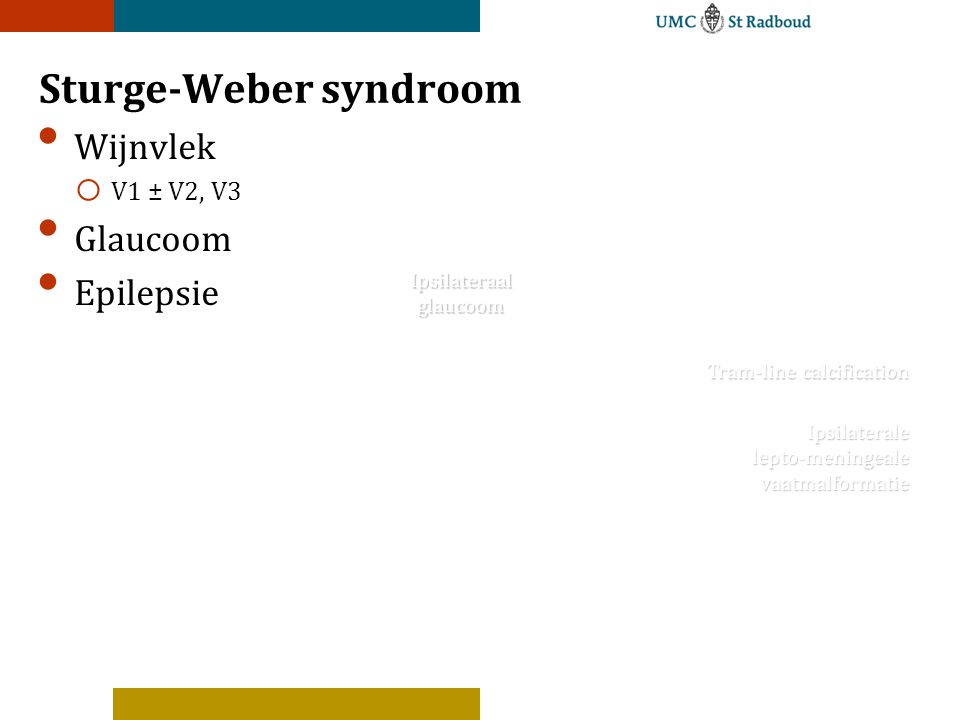 Sturge-Weber syndroom