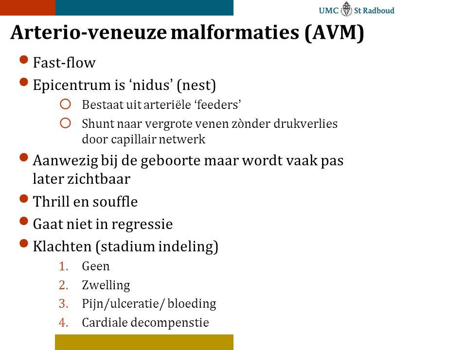 Arterio-veneuze malformaties (AVM)