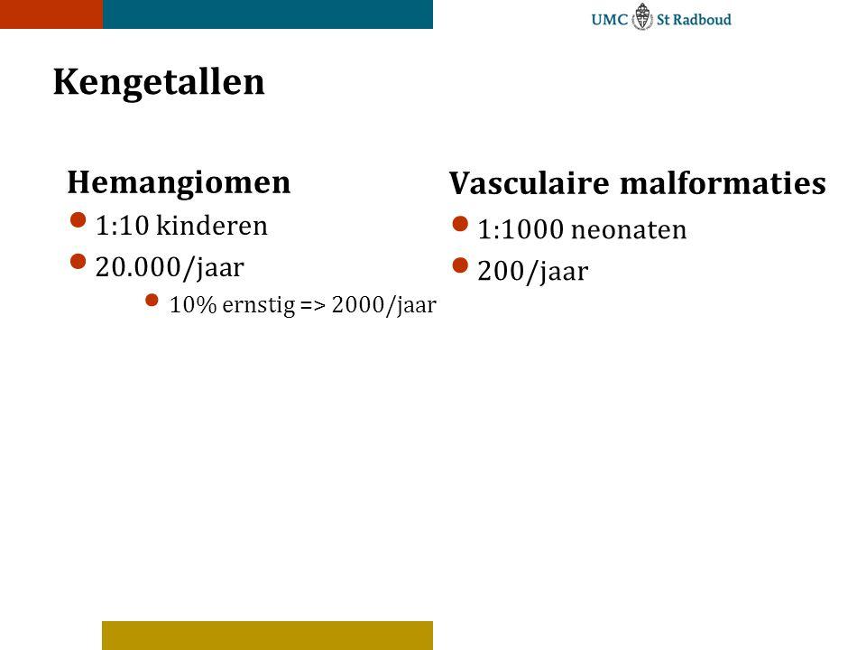Kengetallen Hemangiomen Vasculaire malformaties 1:10 kinderen