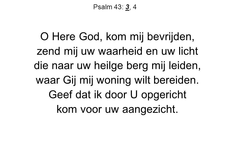 O Here God, kom mij bevrijden, zend mij uw waarheid en uw licht