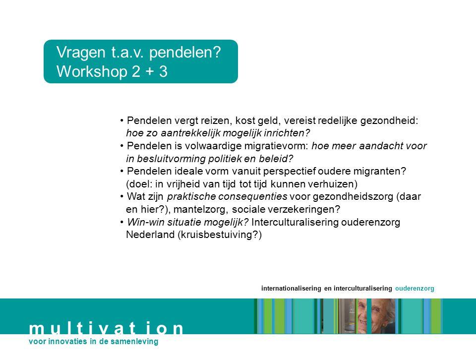 m u l t i v a t i o n Vragen t.a.v. pendelen Workshop 2 + 3