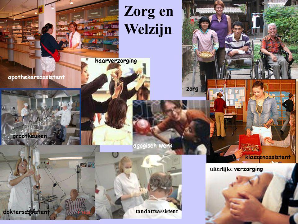 Zorg en Welzijn haarverzorging apothekersassistent zorg grootkeuken