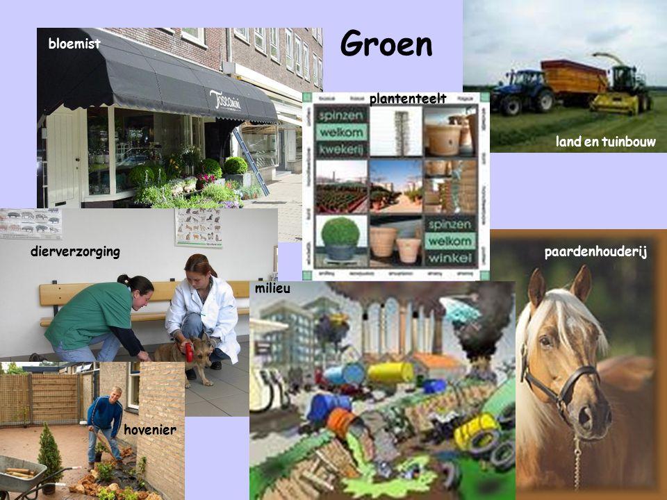 Groen bloemist plantenteelt land en tuinbouw dierverzorging
