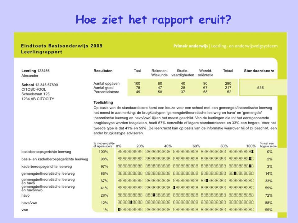 Hoe ziet het rapport eruit