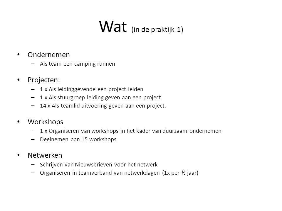 Wat (in de praktijk 1) Ondernemen Projecten: Workshops Netwerken