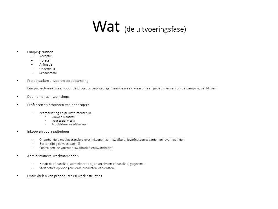 Wat (de uitvoeringsfase)