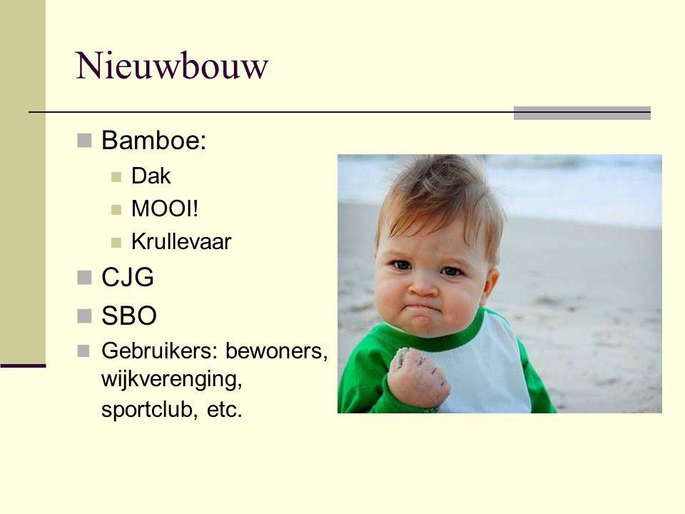 Nieuwbouw Bamboe: CJG SBO Dak MOOI! Krullevaar