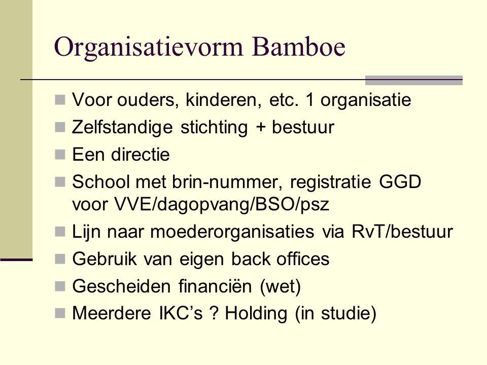 Organisatievorm Bamboe