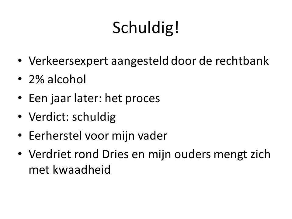 Schuldig! Verkeersexpert aangesteld door de rechtbank 2% alcohol
