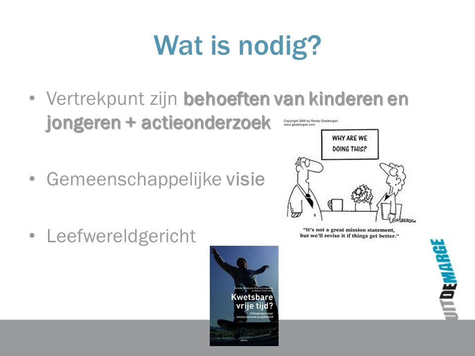 Wat is nodig Vertrekpunt zijn behoeften van kinderen en jongeren + actieonderzoek. Gemeenschappelijke visie.