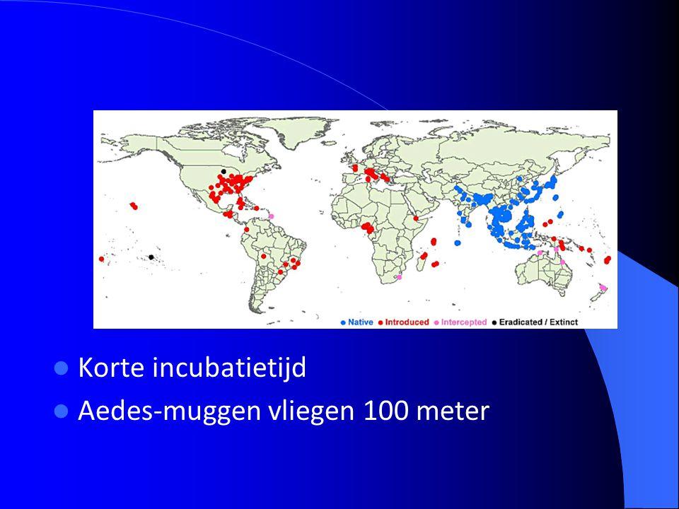 Korte incubatietijd Aedes-muggen vliegen 100 meter