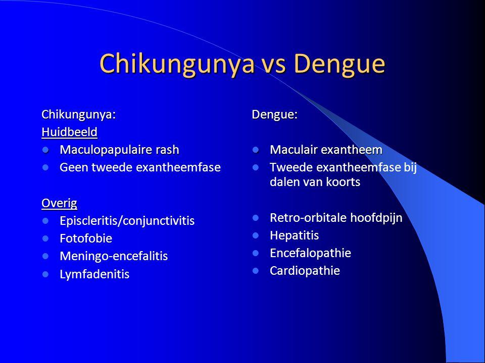 Chikungunya vs Dengue Chikungunya: Huidbeeld Maculopapulaire rash
