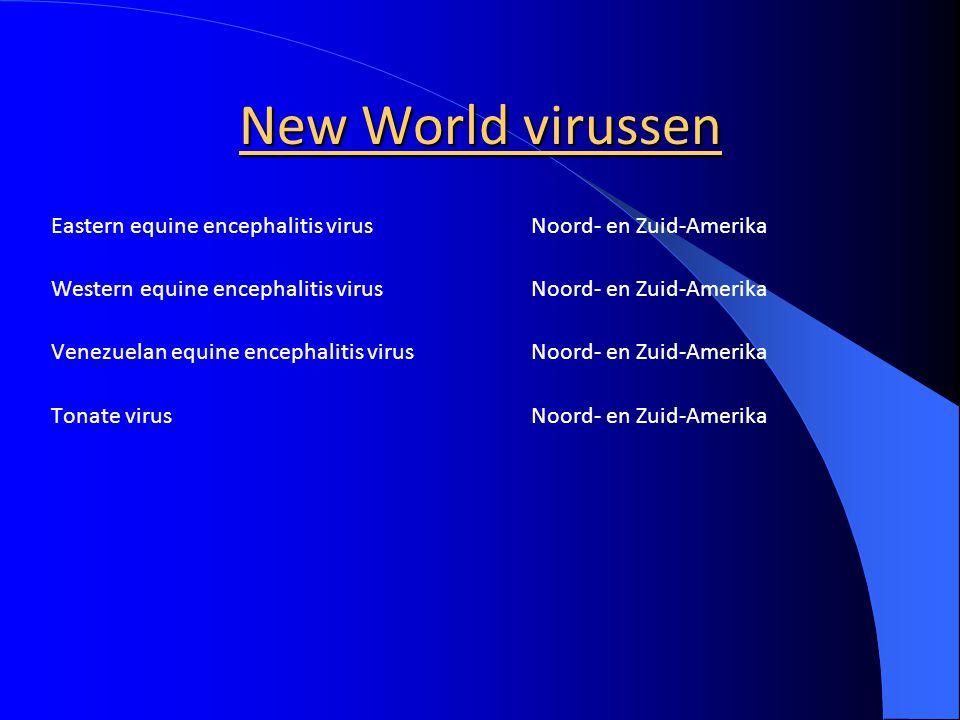 New World virussen Eastern equine encephalitis virus Noord- en Zuid-Amerika. Western equine encephalitis virus Noord- en Zuid-Amerika.