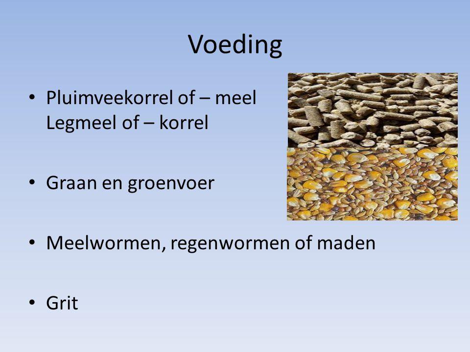 Voeding Pluimveekorrel of – meel Legmeel of – korrel
