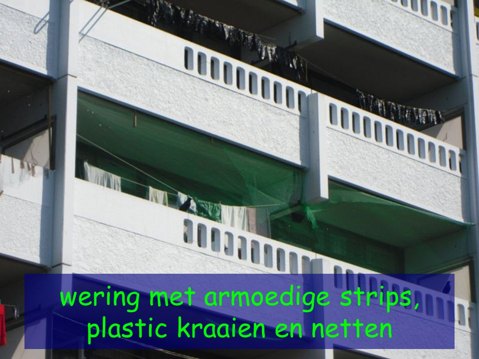 wering met armoedige strips, plastic kraaien en netten